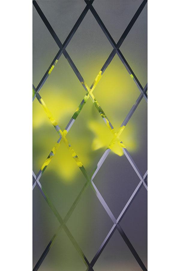 Glass Cabinet Doors Amp Mullion Doors Diamond